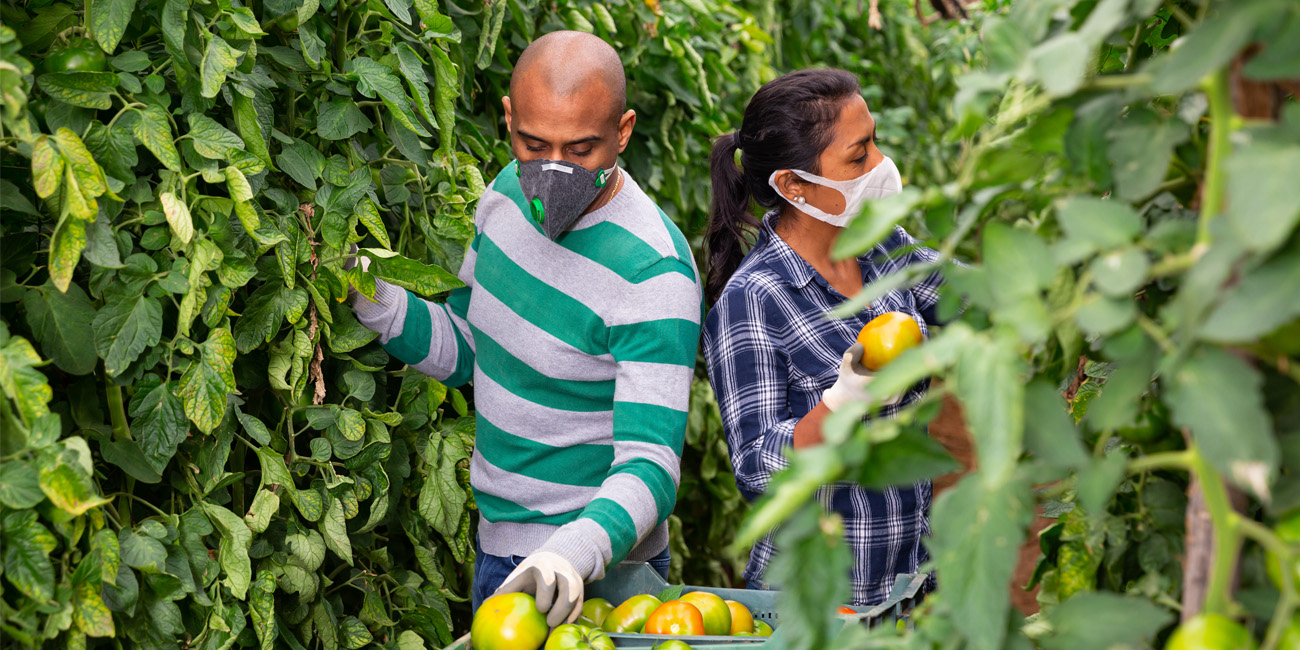 Agricultural Workers